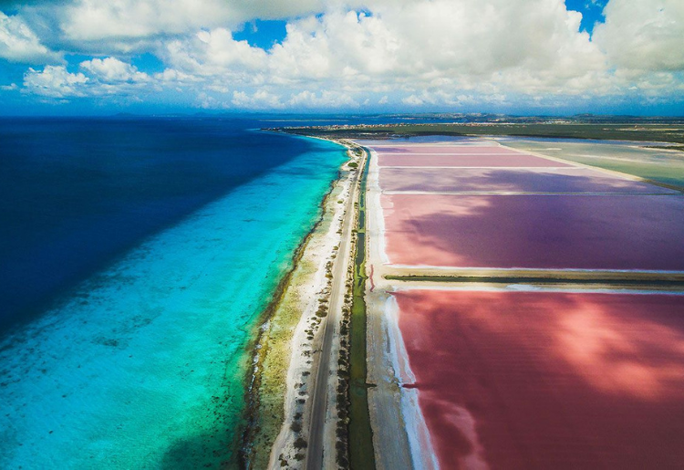 Endless Caribbean - Caribbean Getaway - Bonaire