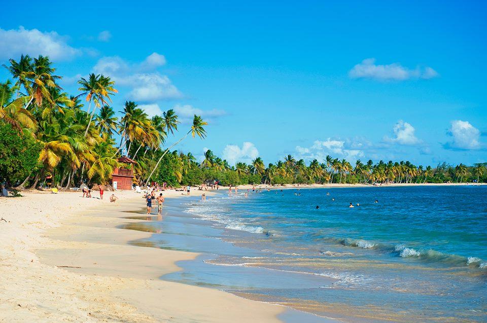 Caribbean Getaway - Martinique
