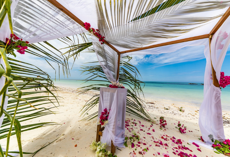 Endless Caribbean - Getting Married in Bonaire