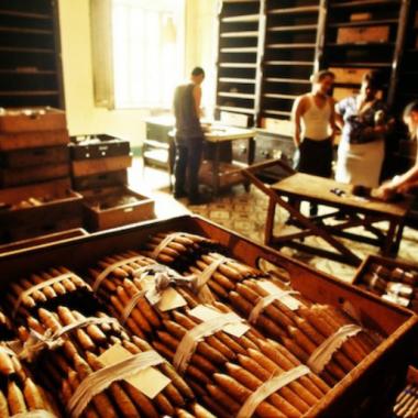 Endless Caribbean - Cuban Cigar Factory Tours