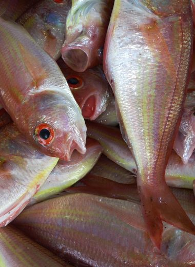 fresh fish for dinner in Dominica