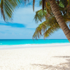 Endless Caribbean - Coronavirus and the Caribbean
