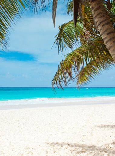 Endless Caribbean - Coronavirus and the Caribbean