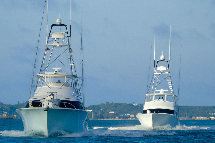 Endless Caribbean - Catch of a Lifetime_ A Bermuda Deep Sea Fishing Excursion Itinerary