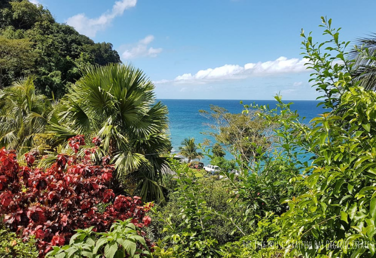 Endless Caribbean - Caribbean Airbnb Rentals Under $100 a Night