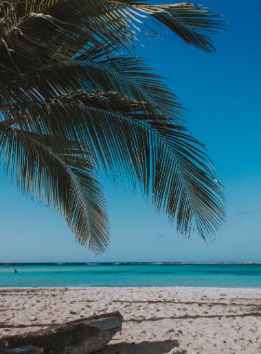 Endless Caribbean - Score Big Savings on Caribbean Vacations